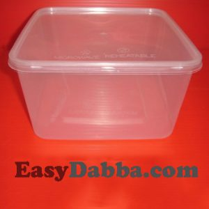 3000ml container
